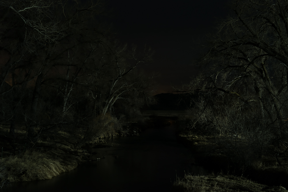 Tree as X-Ray Cutting Through the Night: New Night Landscapes [Photograph]