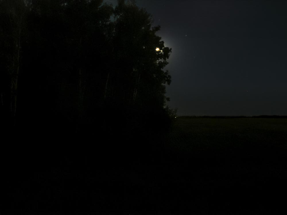 Moon at Night, Mood is Dark: Nightlandscape Photograph