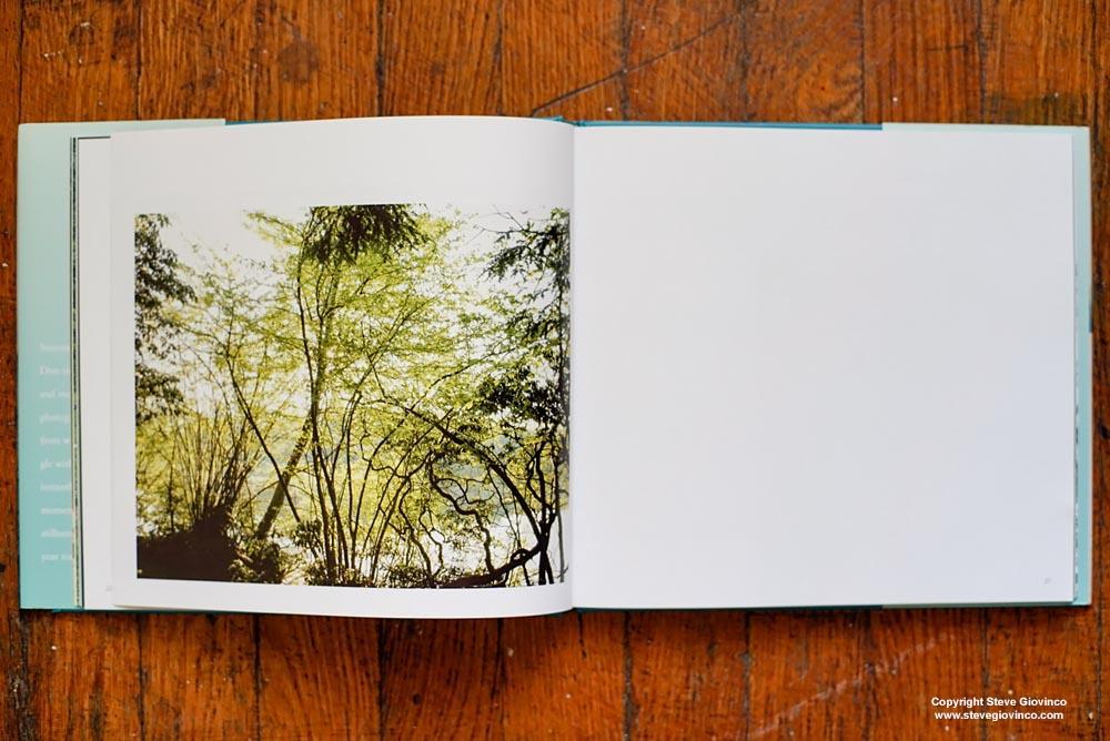 Summertime Book, fine art photography by Steve Giovinco, edited by Joanne Dugan
